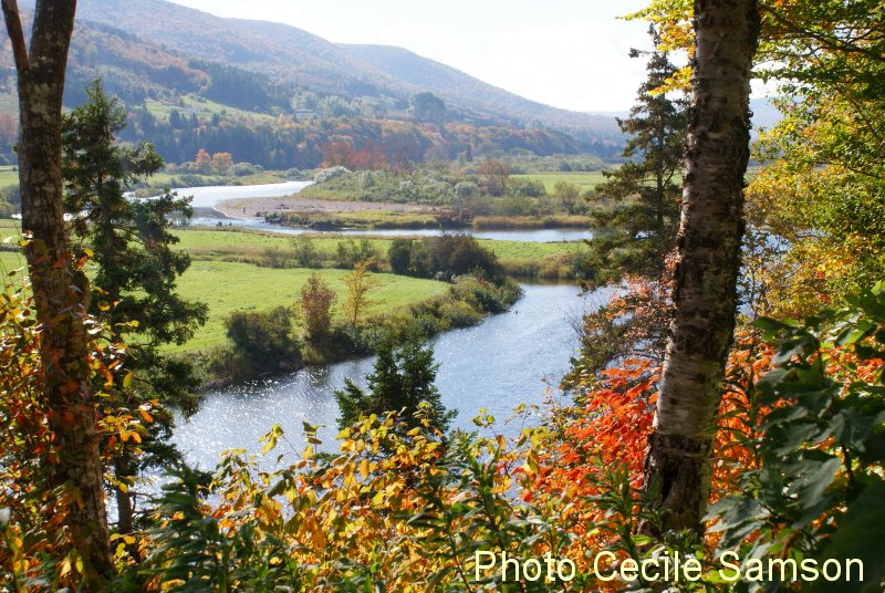 Cape Breton Living Photo of the Week Memories: The Margaree River - Past Photo of the Week October 17, 2014