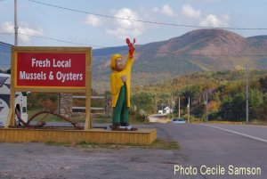 Cape Breton Photo of the Week October 31, 2014