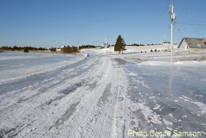 Photo of the Week: Icy Chapel Cove Rd