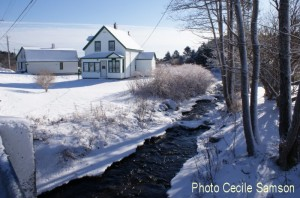 Cape Breton Living Photo of the Week - L'Ardoise