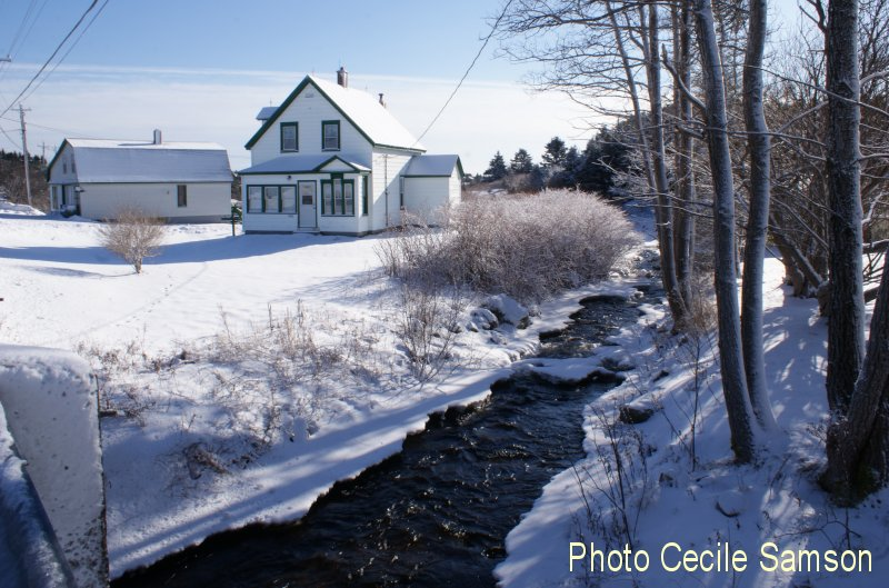 "Cape Breton Photo Memories: L'Ardoise Brook 2015 Cape Breton Island L'Ardoise brook 2015 -  ""The beauty of winter is that it makes you appreciate spring.""  - L.M. Montgomery"
