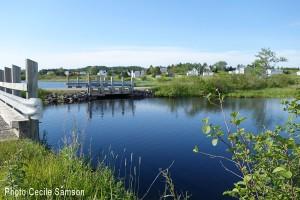 Cape Breton Living's Photo of the Week: L'Ardoise Road to Fleur-de-Lis Trail