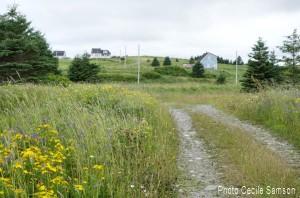 Cape Breton Living's Photo of the Week: L'Ardoise