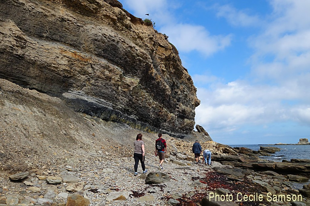 Cape Breton Photo Memories: Cape Breton Fossil Centre Sydney Mines -  This post is from August 28, 2015.