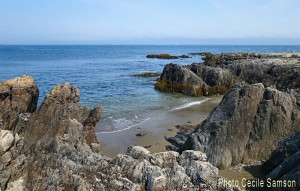 Cape Breton Photo of the Week: Point Michaud