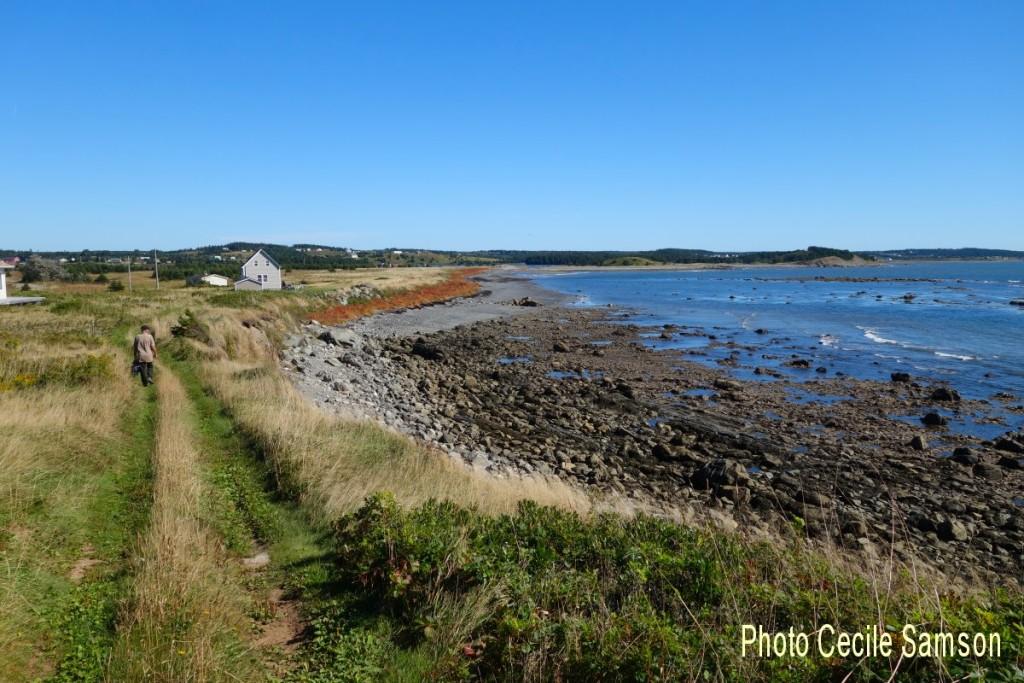 "Cape Breton Living Photo Memories: L'Ardoise 2015 Chapel Cove, L'Ardoise 2015, Cape Breton  ""A walk in nature walks the soul back home."" - Mary Davis"