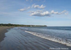 Cape Breton Living Photo of the Week: Point Michaud Walk