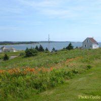 cape-breton-photo-weeksept216