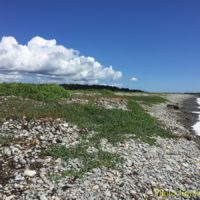 cape-breton-photo-weeksept916