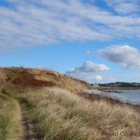 cape-breton-photo-weeknov1116