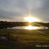 cape-breton-photo-weeknov416