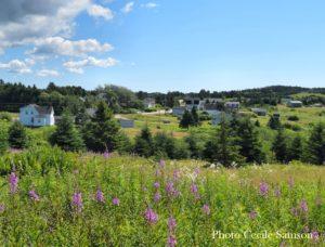 Cape Breton Living Photo of the Week: L'Ardoise Summer Day