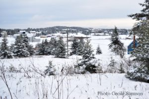 Cape Breton Living Photo of the Week: After Snowfall - L'Ardoise