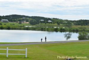 Cape Breton Living Photo of theWeek: L'Ardoise - Out Looking for Ducks