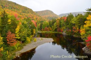 Cape Breton Living Photo of the Week: Cabot Trail Colours