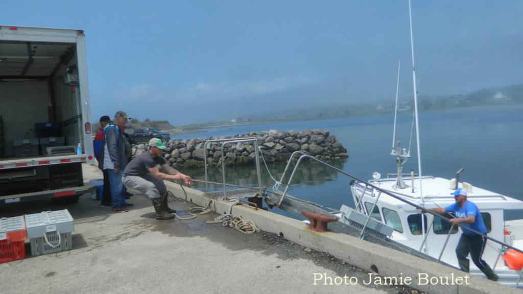Cape Breton Living: Chapel Cove - L'Ardoise