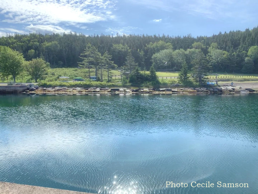Cape Breton Living Photo of the Week: St. Peter's Canal