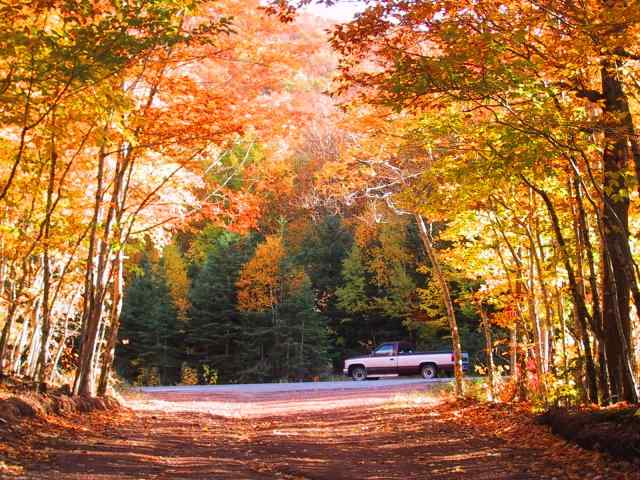 Cape Breton Living Photo of the Week Memories: Cabot Trail Colours