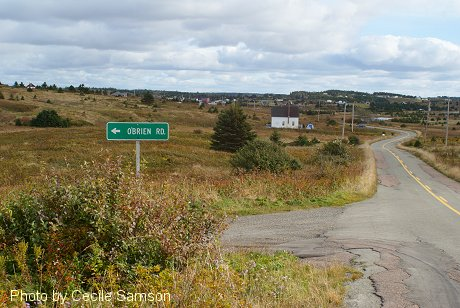 Chapel Cove Rd. L'Ardoise - A past Cape Breton Living Photo of the Week from November 8 2002.