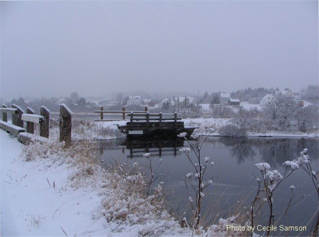 Photo of the Week Memories: Country Christmas. Chapel Cove Rd. L'Ardoise. Country Christmas. This photo taken in L'Ardoise was posted on December 7, 2007.