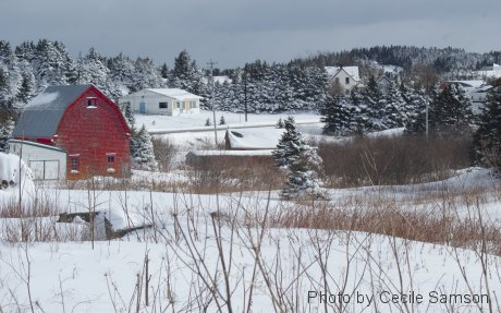 Photo of the Week Memories: Red barn - February 2011