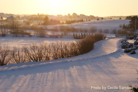 Photo of the Week Memories: L'Ardoise - A past Cape Breton Living Photo of the Week from February 6, 2009.