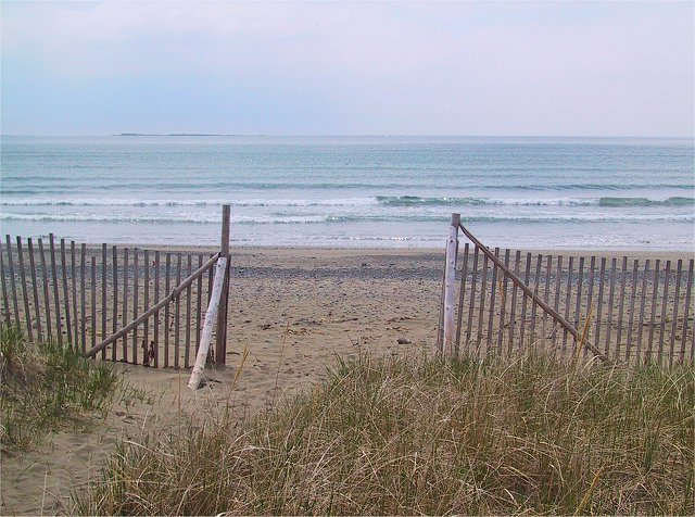 Photo of the Week Memories: 2002 Point Michaud Beach.