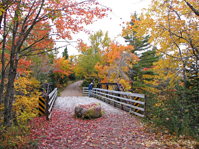 "Cape Breton Photo Memories: Mary Ann Falls 2007. Mary Ann Falls 2007-  ""I'm so glad I live in a world where there are Octobers.""  - L.M. Montgomery  his photo was posted as Photo of the Week on October 19, 2007."