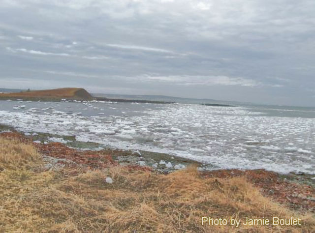 """Cape Breton Living Photo Memories: Chapel Cove 2009 L'Ardoise - Chapel Cove 2009 """"We're tied to the ocean. And when we return to the sea, whether to sail or to see - we will return from where we came."""" - John F. Kennedy"""