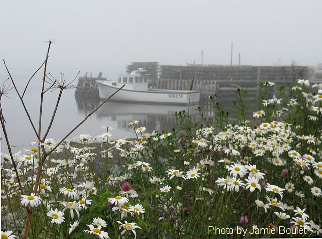 """Cape Breton Living Photo Memories: July 2009 Cape Breton Island -  """"Sometimes when you lose your way in the fog, you end up in a beautiful place! Don't be afraid of getting lost!"""" - Mehmet Murat Ildan"""